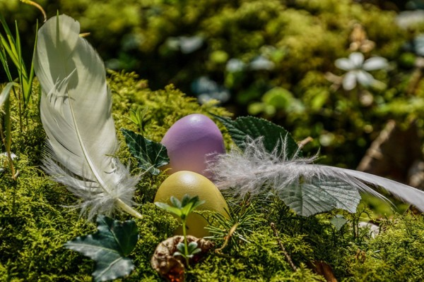 easter-4976875_850x567